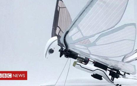 106035174 metafly edwin van ruymbeke - Insect inspired winged drone makes a buzz and other news