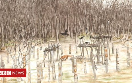 106090490 72c358d9 7194 4990 9b80 43d9822f9200 - Dig planned at rare 'Neolithic mortuary' in Aberdeenshire
