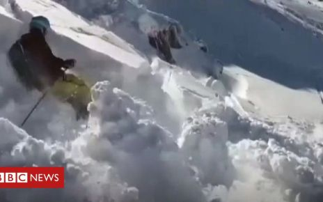 106143615 p074br9x - ICYMI: Escape from an avalanche and a tidy mouse