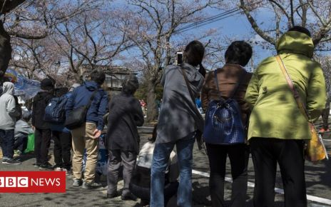 106380387 mediaitem106380386 - Fukushima nuclear disaster: Abandoned town allows first residents home