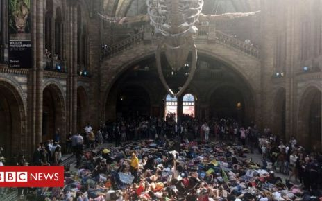 106547582 mediaitem106547581 - Extinction Rebellion: Climate change protesters at Natural History Museum