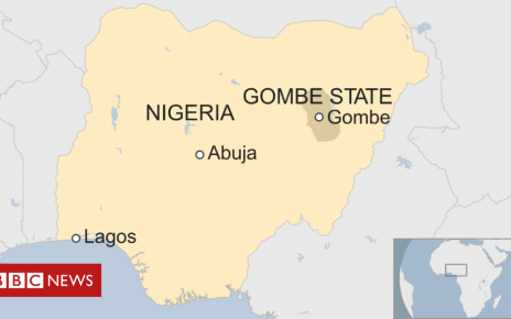 106555937 nigeriagombe0419 - Nigerian 'children killed' after car hits Easter parade in Gombe