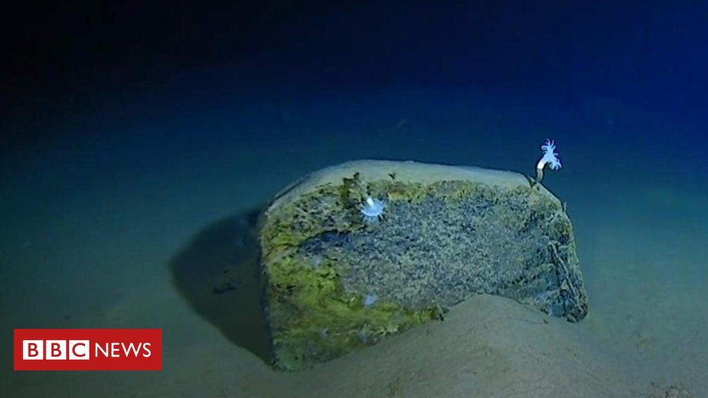 106937665 p0792dl4 - Mariana Trench: Record-breaking journey to the bottom of the ocean
