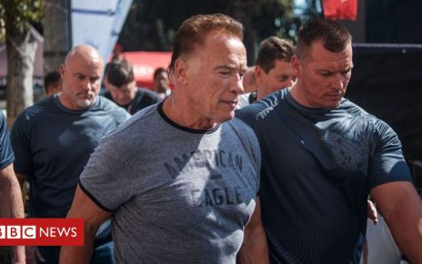 107013587 054045535 1 - Arnold Schwarzenegger drop-kicked at South Africa event