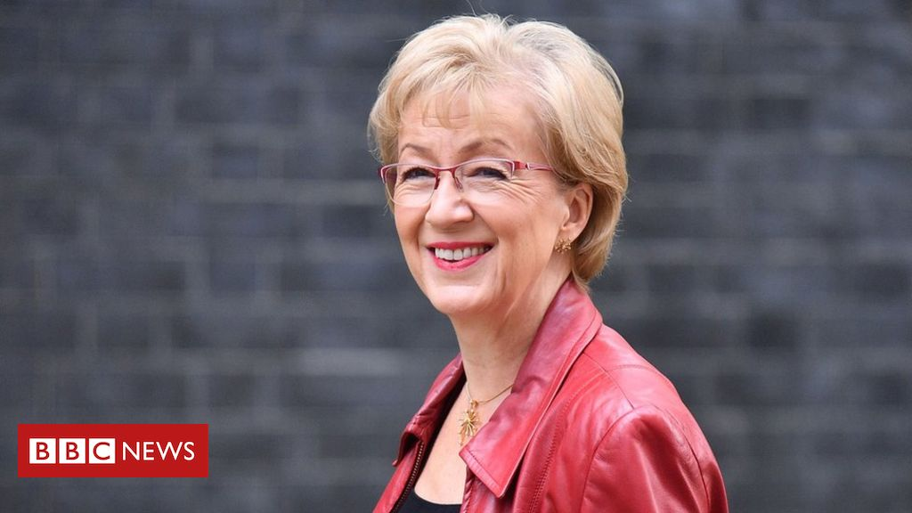 107071845 203ab858 e8d7 4bde 8836 e5a640851596 - Theresa May faces pressure after Andrea Leadsom resigns