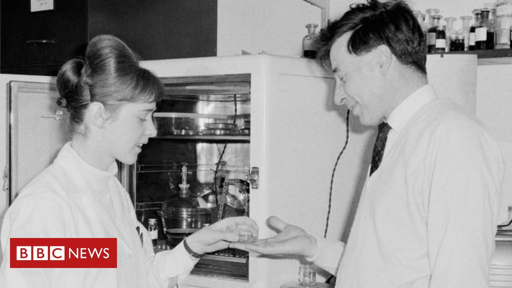 107317061 gettyimages 1151376836 - Female scientist's IVF contribution was 'unrecognised'