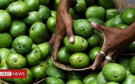 107318625 gettyimages 102946394 - Philippines faces two million kilogram mango surplus