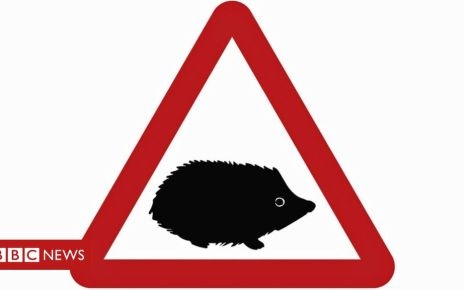 107403827 small wild animals   public - Hedgehog sign warns drivers of small wildlife hazards