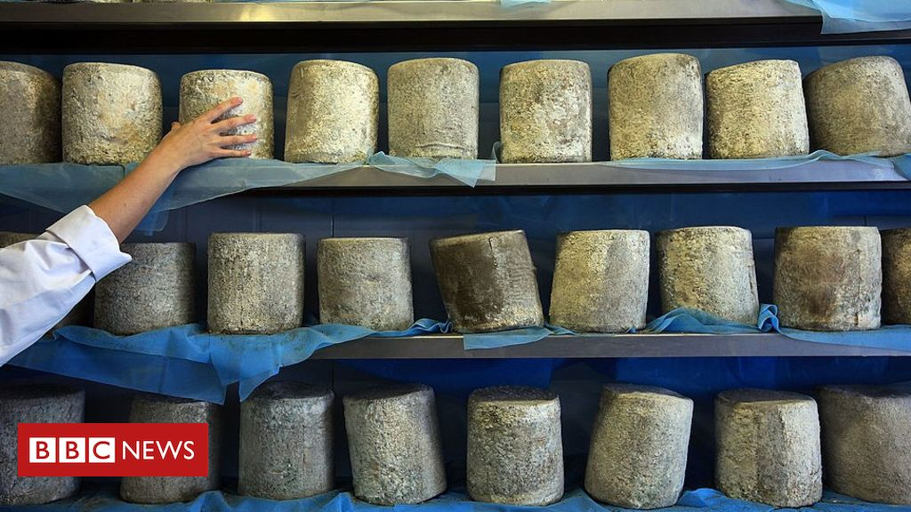 107409821 gettyimages 91934949 - Wensleydale Cheese waste to produce 'green' gas