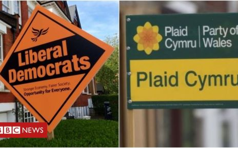 107751892 libdemplaid - Remain parties team up for Brecon and Radnorshire by-election