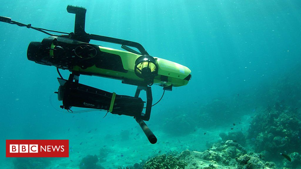 107833292 p07gn6pb - Could this robot help save coral reefs?