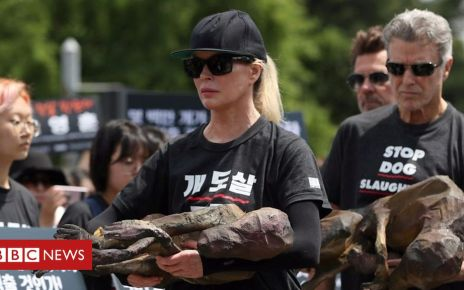 107855441 p07grjqb - Kim Basinger joins South Korea dog meat protests