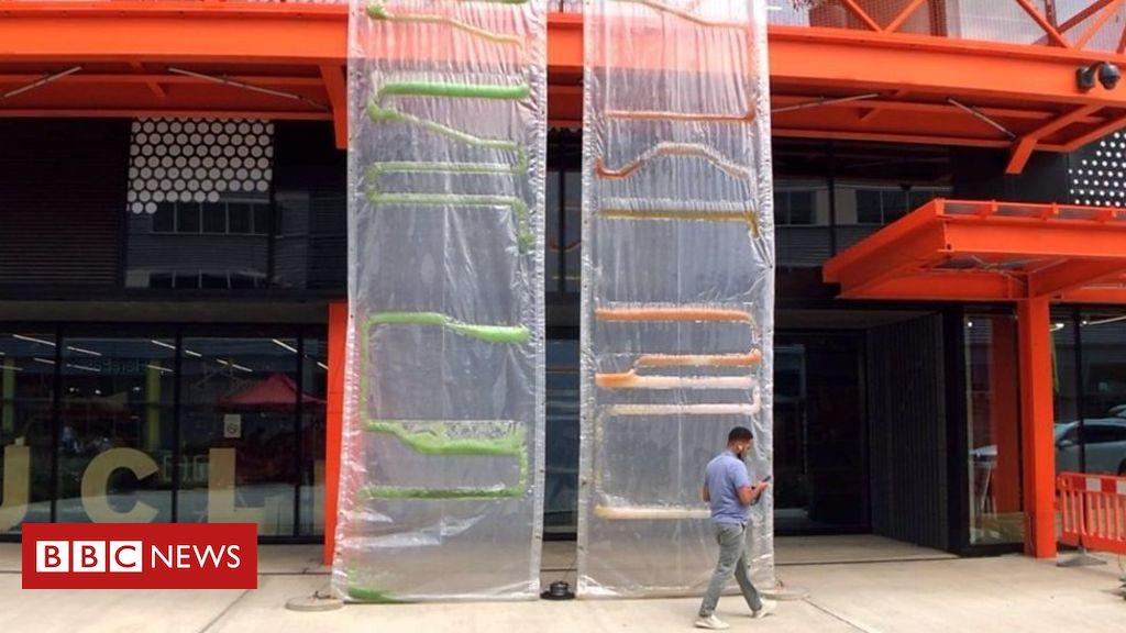 107951594 p07hcstz - Algae bio-curtains: Architects' radical solution to capture carbon