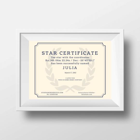 Name A Star Gift 8