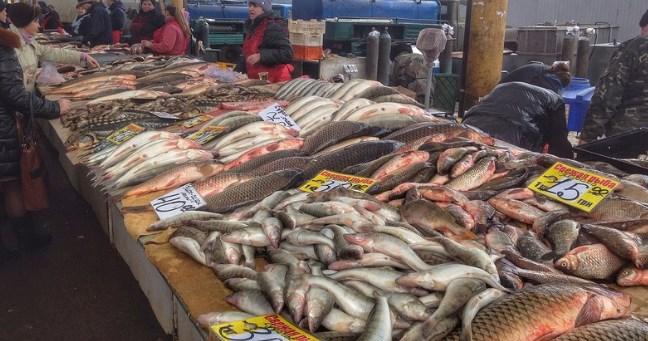 Рыба на привозе