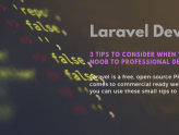 Noob to Professional Laravel Development -A Developer Guide