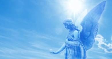 Assim um anjo me falou...