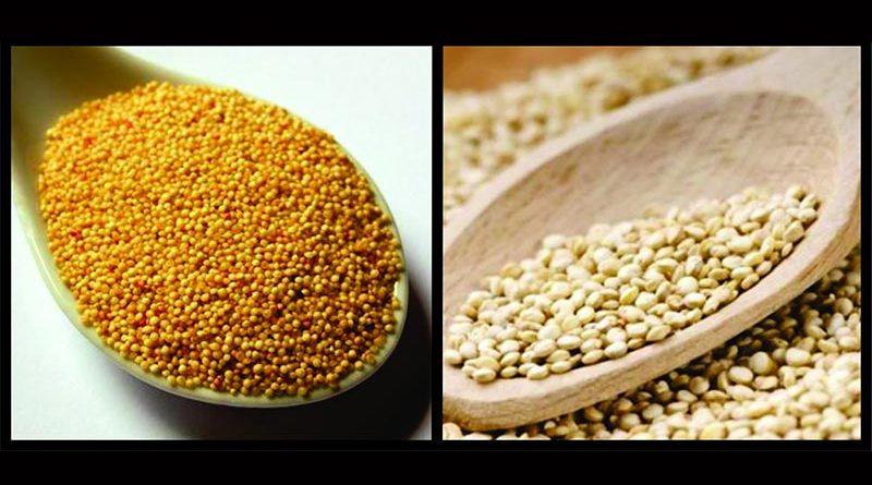 Os benefícios nutricionais da quinoa e do amaranto