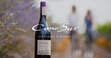 Cono Sur na World Wine Experience