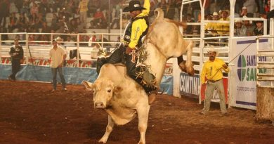Pela primeira vez a Liga Nacional de Rodeio estará no Pontal Rodeo Festival