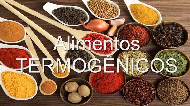 Alimentos termogênicos e tratamento da Obesidade