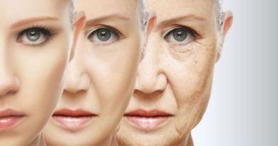 Microbiota e envelhecimento