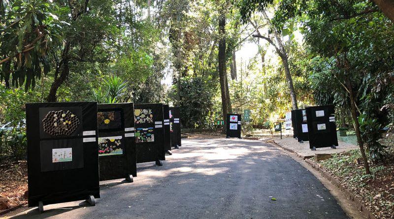 Projeto de educação ambiental 'Sem Abelha Sem Alimento' tem exposição de trabalhos escolares no Bosque Fábio Barreto
