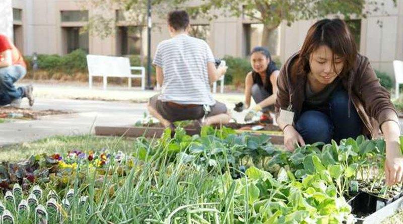 Ações simples deixam seu condomínio mais sustentável