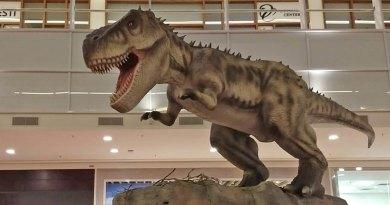 Exposição reúne dinossauros, Kong e muitas outras atrações