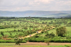 And a healing plain somewhere in Rwanda too