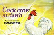Wulu, Wulu & Idoma Iconography in Bongos Ikwue's Music