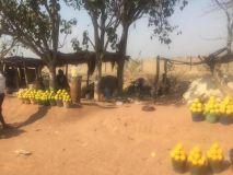 Oranges Sold on the roadside  in Benue
