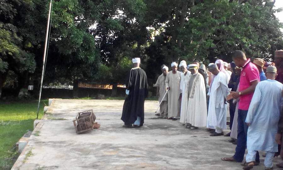 Prof Abubakar Momoh Goes Home