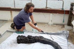 Merman carving found in Poole Harbour contains warm water ship worm