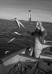 joey-catching-mackerel