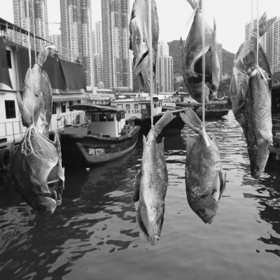 Matthew Atkin's photos of Hong Kong