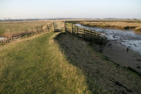 Hollowshore and Ham Farm marshes threatened by Brett Aggregates photographed by Alan Thorne