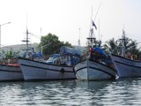 Fishing boats of Goa