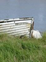 Southwold harbour 12