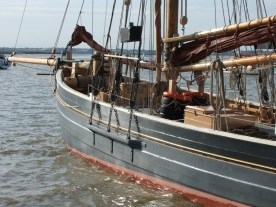 Oare Creek to the Colne and back Pioneer 4