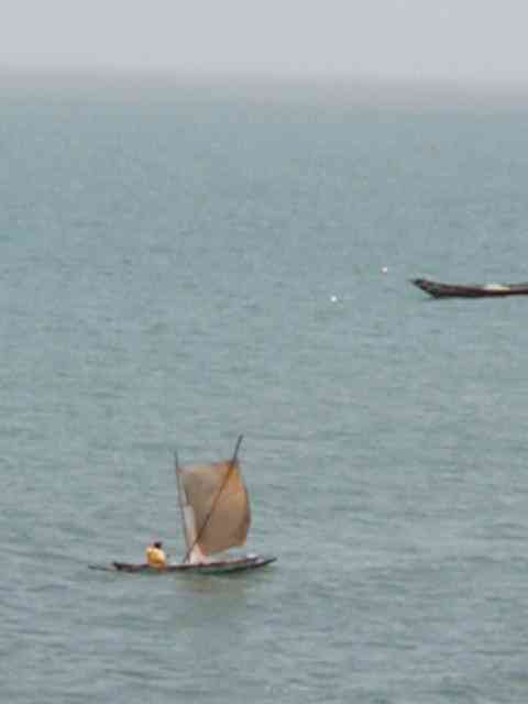 single-person-pirogue-with-sail-2003