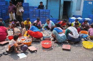 Photographer Matthew Atkin in Mumbai 5