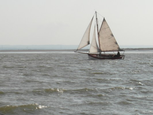 In the Swale 21 June 2013 cutter 2