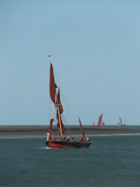 Swale match 2013 18 sailing barge Repertor