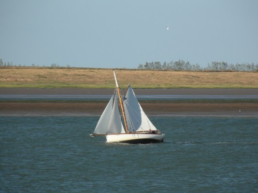 Swale match 2013 26 small cutter