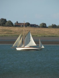 Swale match 2013 32 Cygnet