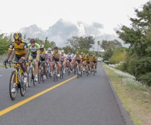 Riders in action during last year's Bestmed Tour de Boland in the Western Cape's wine country. The 2014 edition of the four-day tour starts on March 4. Photo: Capcha Photography