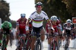Peter Sagan in action
