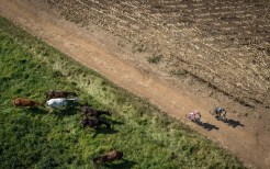 An aerial view of riders in action on day one of sani2c Adventure. Photo: Em Gatland