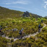Riders enjoy magnificent scenery and trails on the Wines2Whales Ride route.